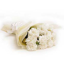 12 white carnations bunch